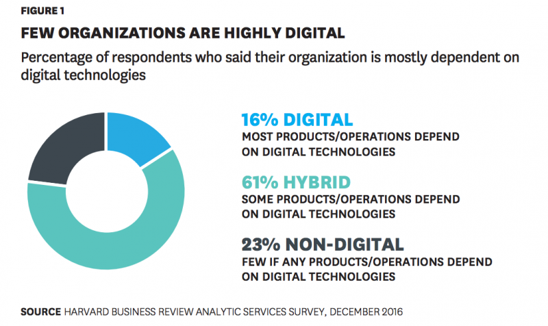 Survey results about organizations' digital level