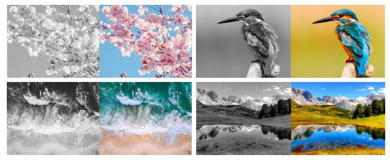 Colorization of images with self-supervised learning